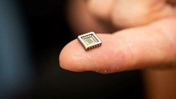 Investigadores desarrollaron la primera neurona artificial con forma de chip